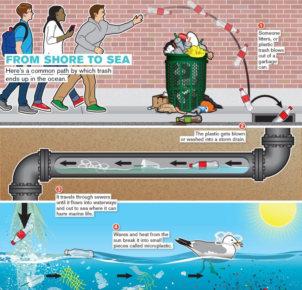 plastic to ocean how.jpg