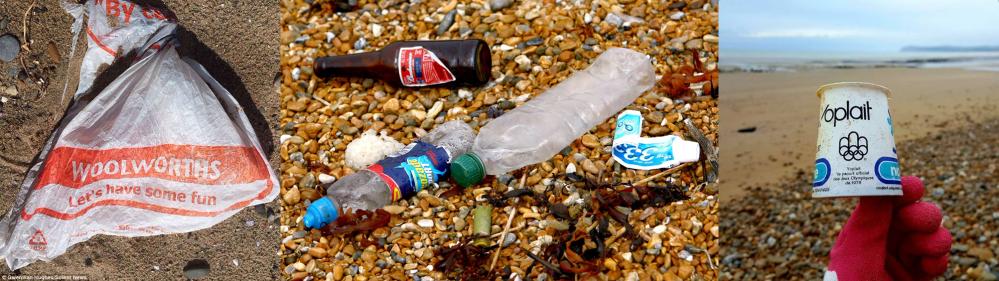 Beach litter images.png