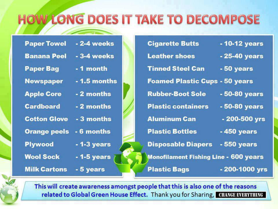 how-long-does-it-take-to-decompose