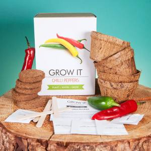 Grow it Chilli Plant